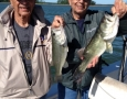 May 2, 2017 Twins Irv and Bernie Kershner catch twin hybrids.