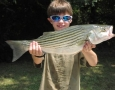 Jon Phillip Spiers with his 12 striper That he caught on umbrella rig.